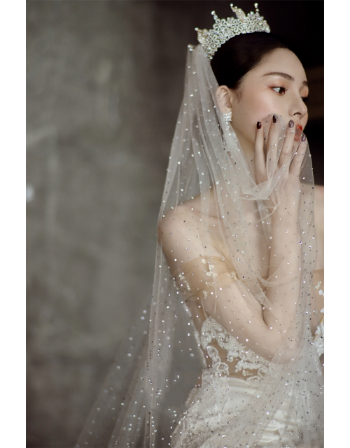 J'taime Veil | Starry Night Celestial Veil Cathedral Length 3 Meters Bridal Veil