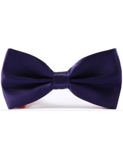 Riccardo Bow Tie (Dark Purple)